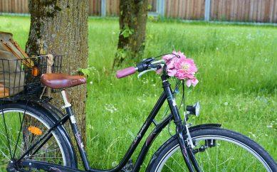 Dlaczego warto jeździć na rowerze?
