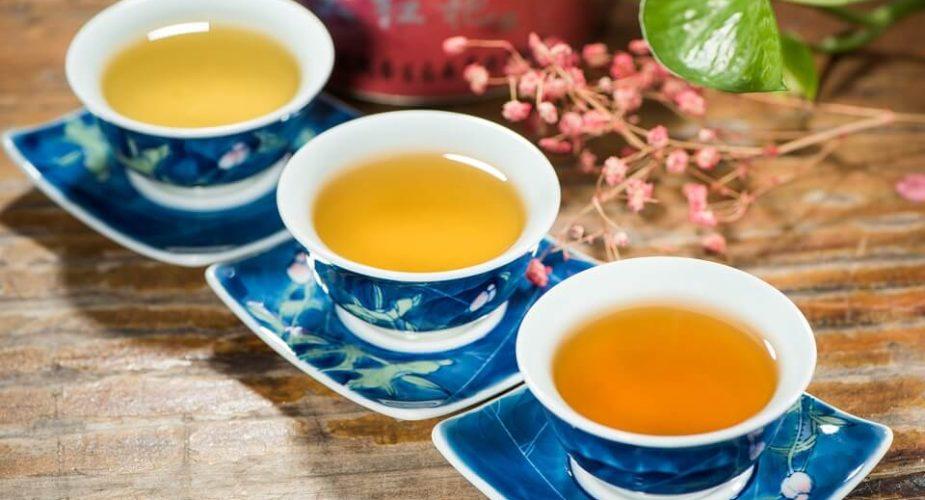 Rooibos — zdrowa alternatywa dla klasycznej herbaty