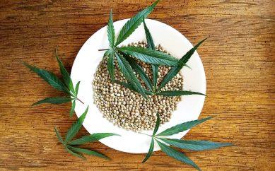 CannabiGold — olejki z konopi zawierające kannabinoidy