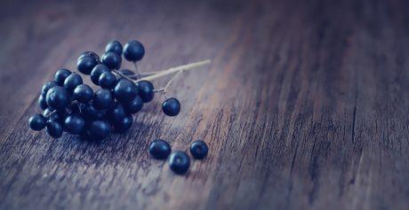 Odmładzająca jagoda acai — superfoods w kosmetykach