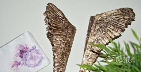 Podsumowanie Plebiscytu Świątynia Kosmetyków — Moja Ulubiona Drogeria i Perfumeria!