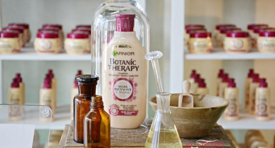 Kosmetyki detoksykujące antidotum na problemy włosów — Garnier Botanic Therapy