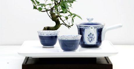 Kokoro — japońska tradycja i smak!