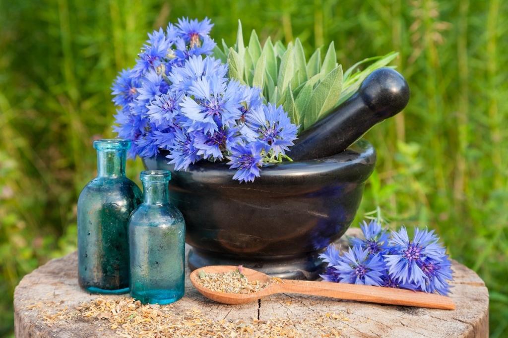 Kosmetyki z ekstraktem z kwiatów chabra bławatka