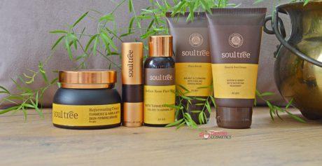 Recenzja ajurwedyjskich kosmetyków SoulTree z Indii